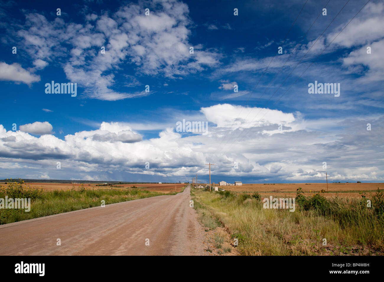 Picturesque scene of a farm along a dirt road in a vast rural landscape with cumulus cloud formations in southwest Stock Photo