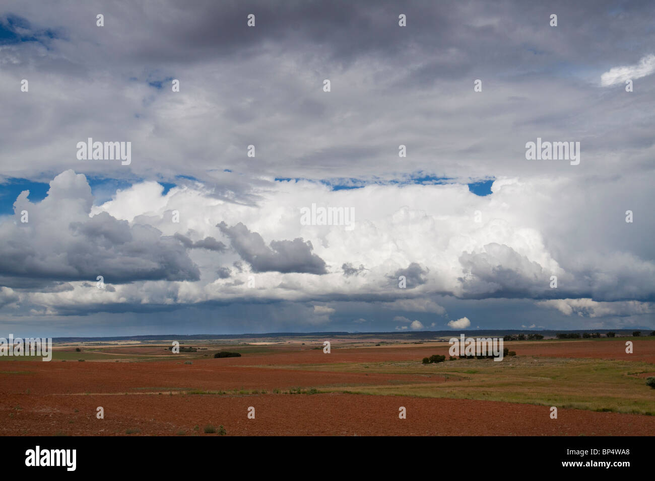 Dramatic cumulus cloud formations looming over a vast field of tilled red soil in southwest Colorado - Stock Image