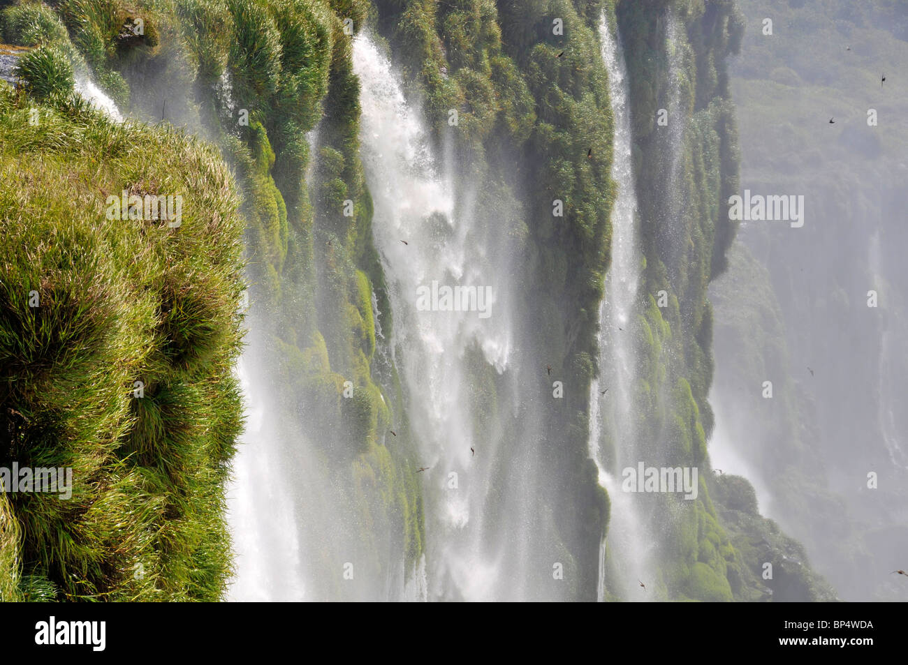 Falls next to Devil's throat, Iguassu or Iguazu falls National Park, Argentina - Stock Image