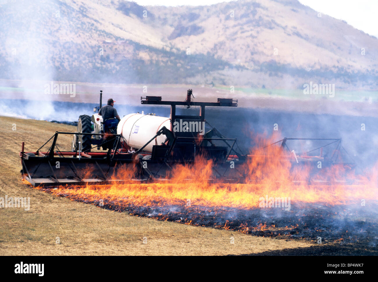 Tractor pulling propane torch burning 'Kentucky Blue Grass' stubble - Stock Image