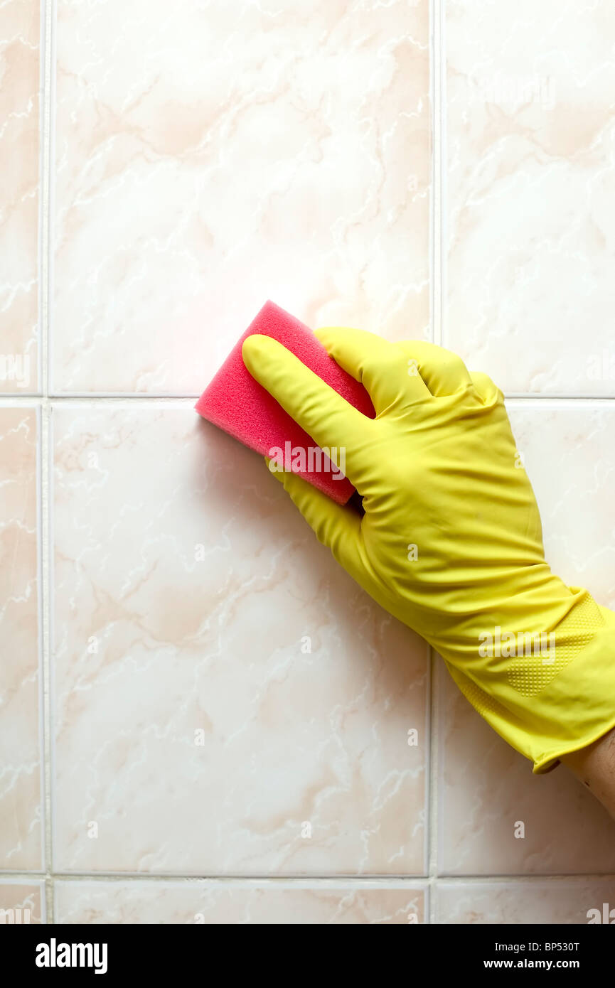 Cleaner is cleaning tiles in bathroom with red sponge Stock Photo ...