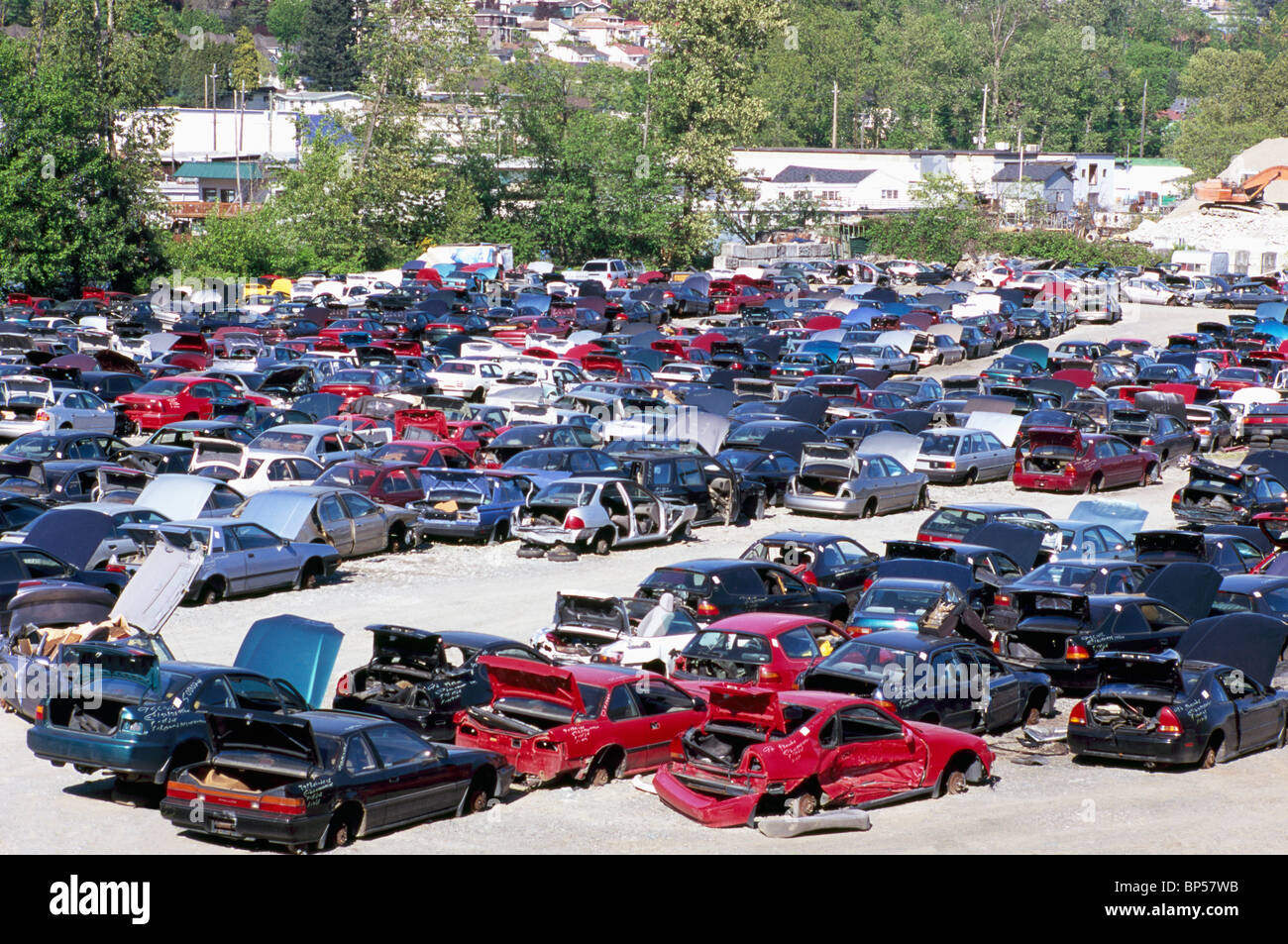 Wrecked Cars in Car Scrap Yard, Junkyard of Spare Used Auto Parts ...