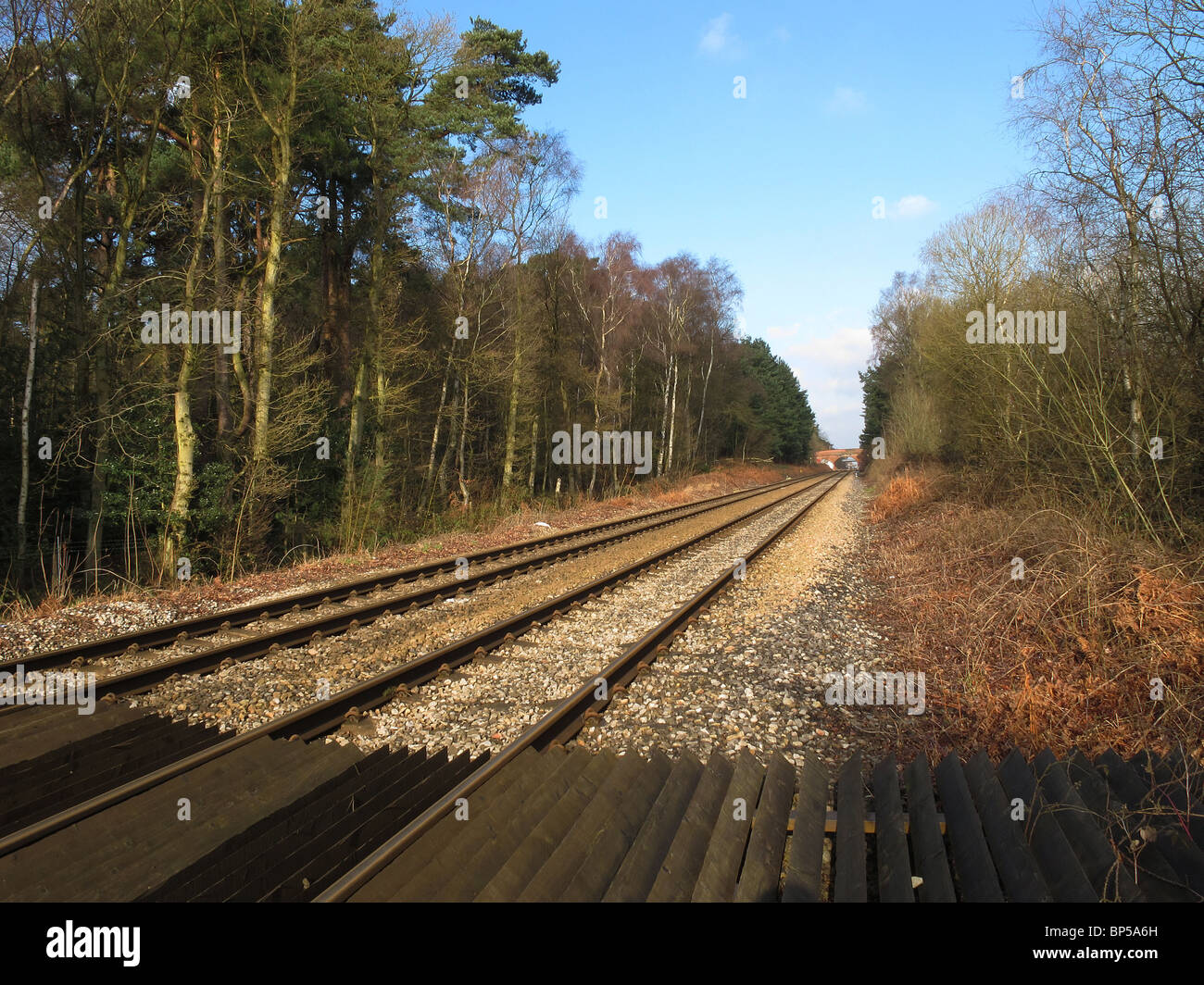 Straight parallel railway lines near Crowthorne Berkshire-1 - Stock Image