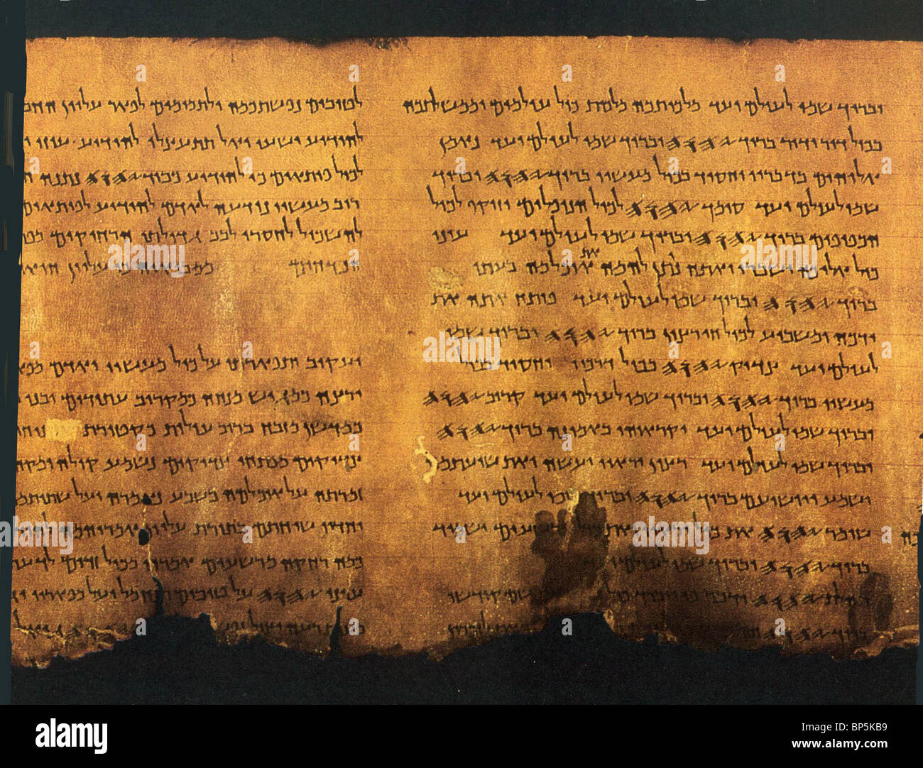 'PSALMS SCROLL' FROM QUMRAN CAVE 11 THE SCROLL CONTAINS A LITURGICAL COLLECTION FROM THE OLD TESTAMENT BOOK OF PSALMS. Stock Photo