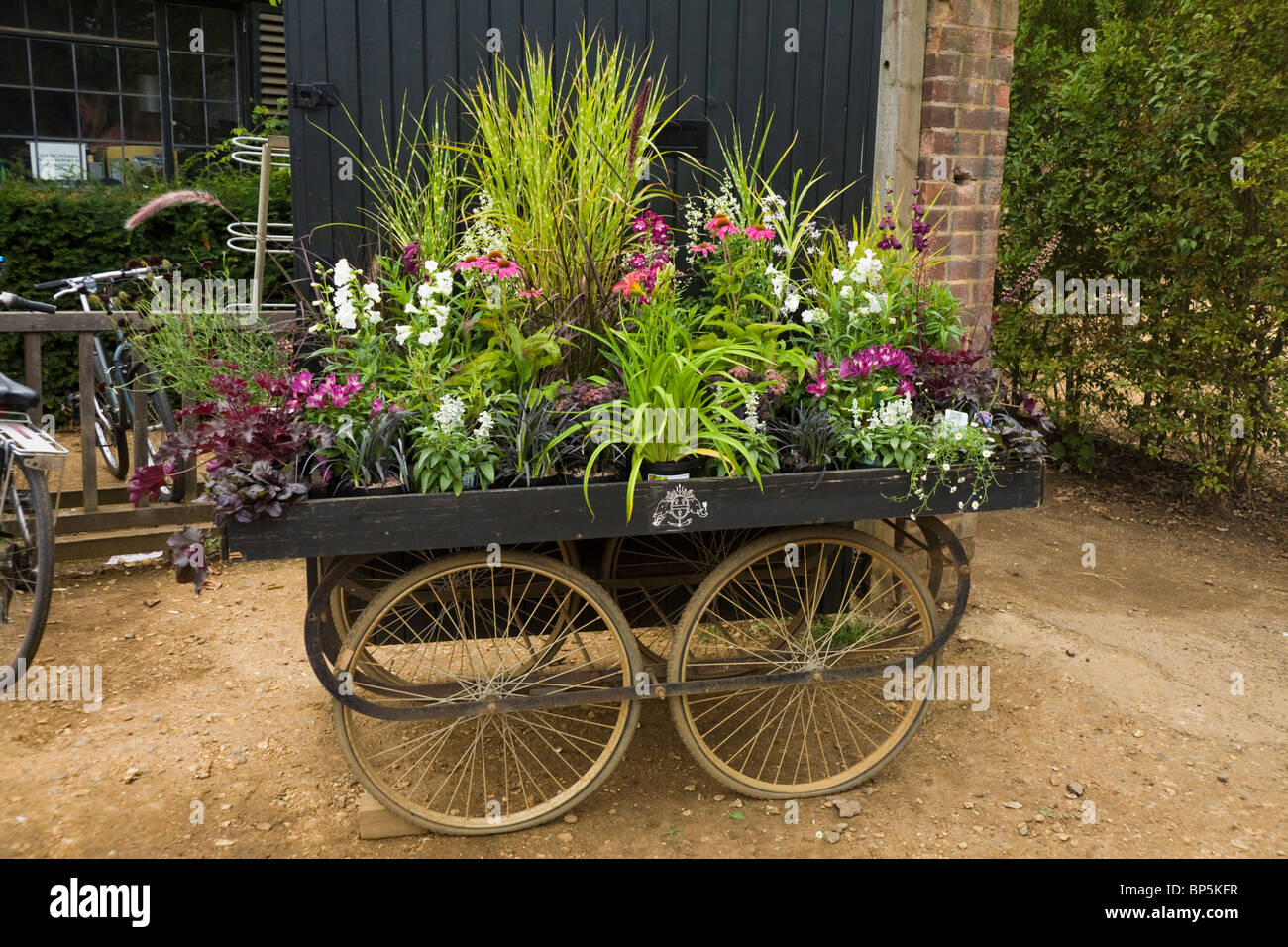 Flowers – planted to inspire – in an arrangement / planting / plants ...