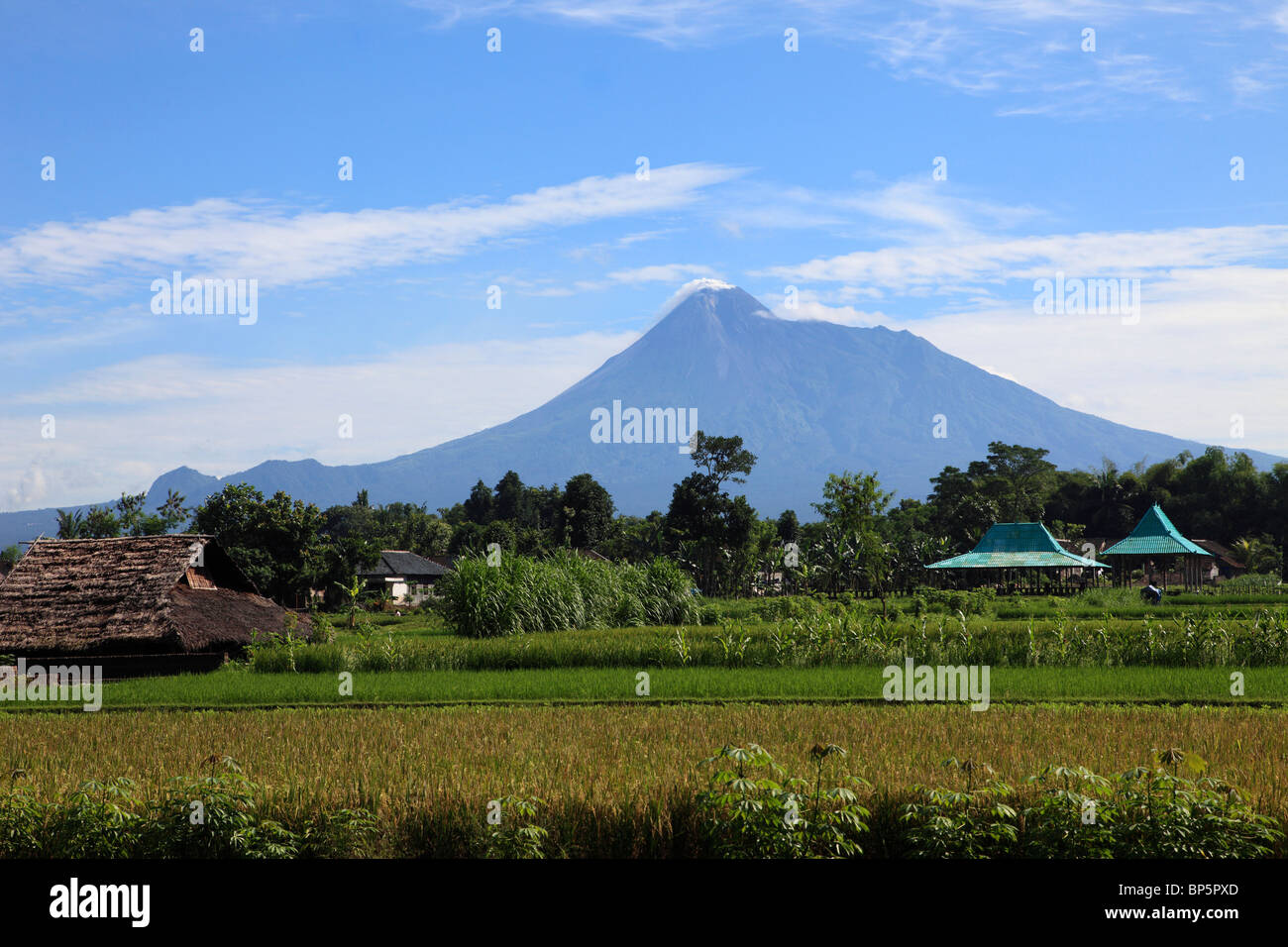 Indonesia, Java, Gunung Merapi volcano; agricultural fields; - Stock Image