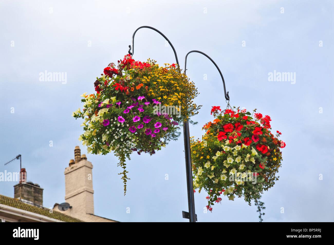 Flowering Hanging Baskets - Stock Image