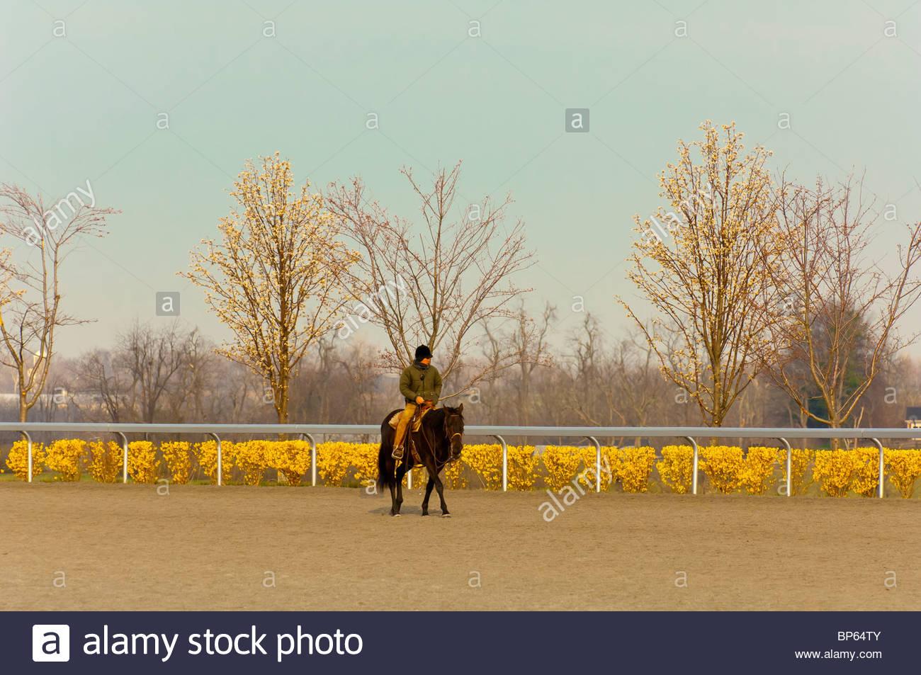 Morning workouts, Keeneland Race Course, Lexington, Kentucky USA - Stock Image