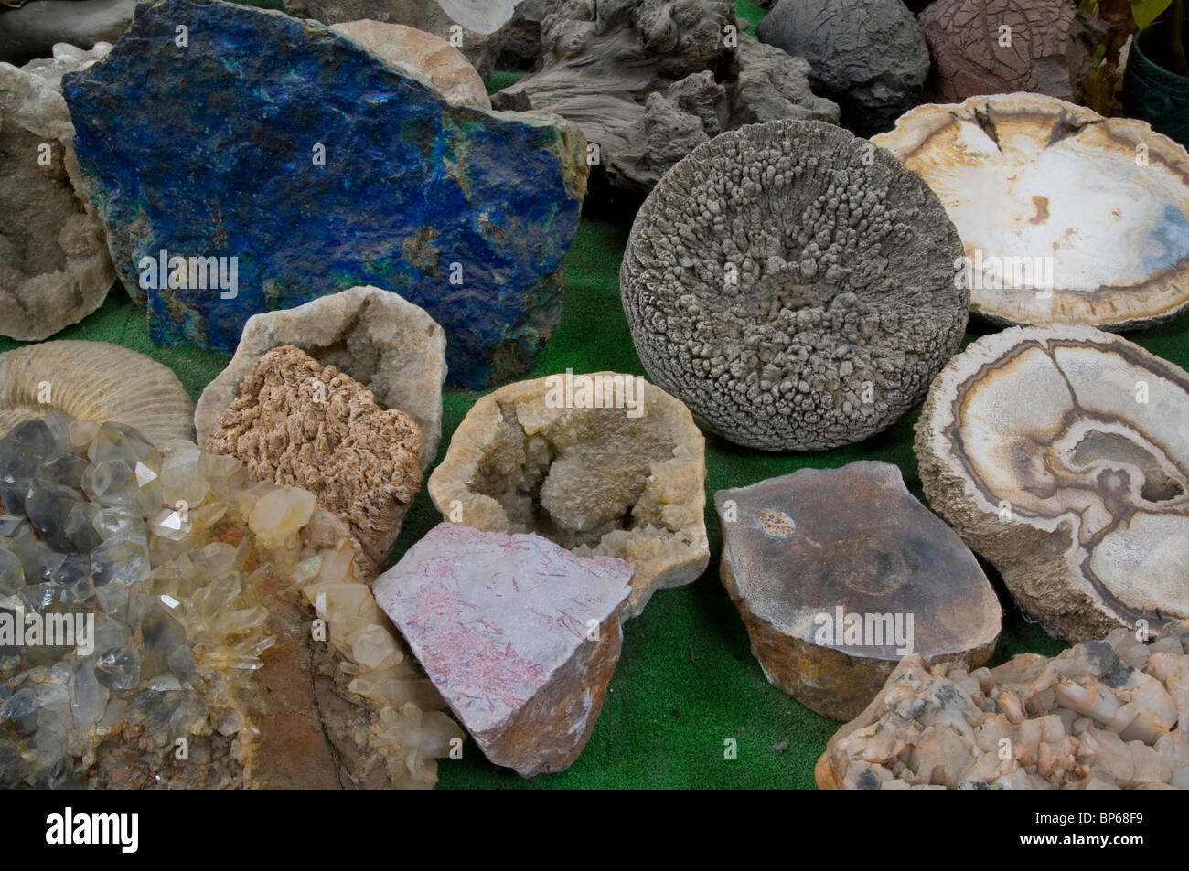 Geology specimens on display at Chapman's Gem & Mineral Shop & Museum - Stock Image