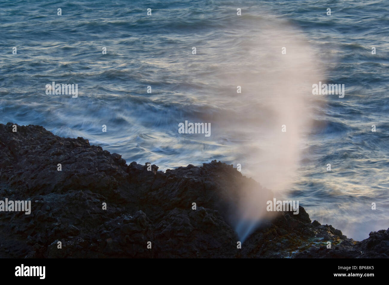 Spurt of water spraying in wind from blowhole in coastal rocks, Shelter Cove, on the Lost Coast, Humboldt County, - Stock Image