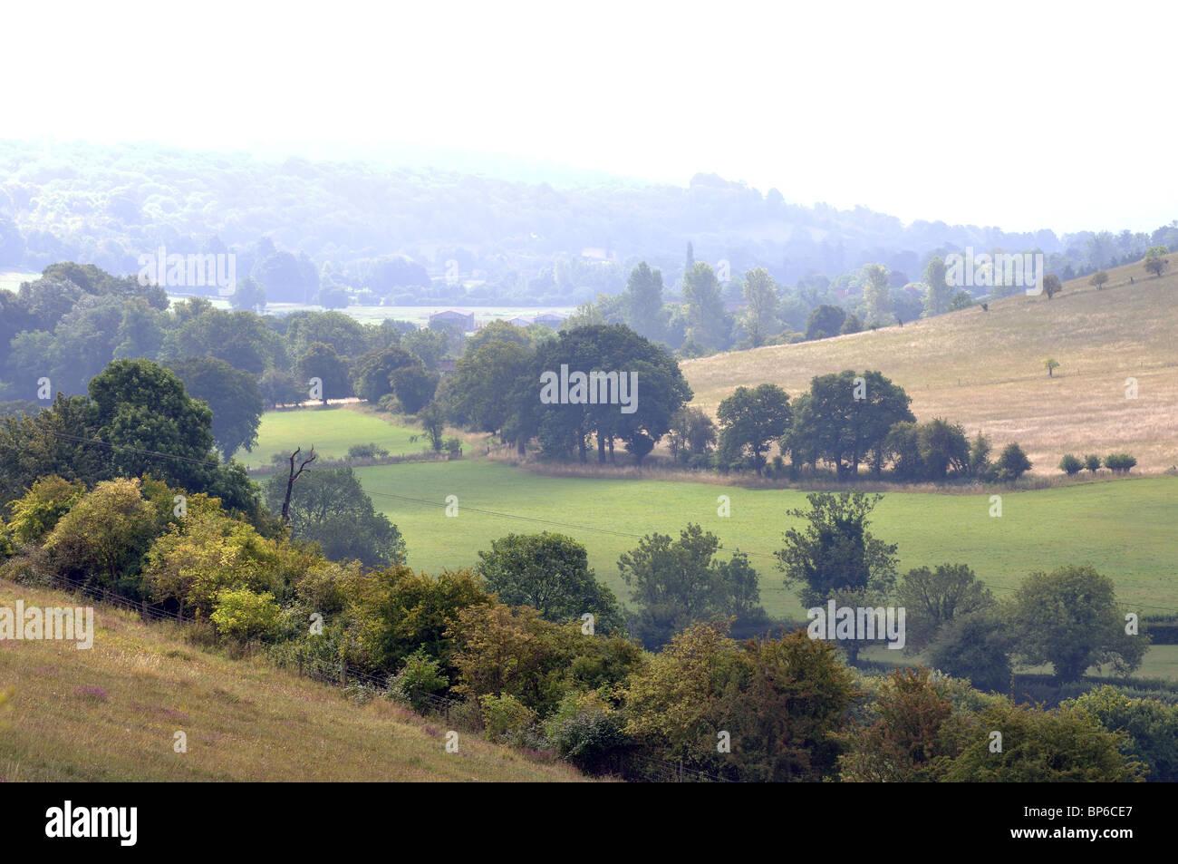 Chiltern Hills landscape near Turville, Buckinghamshire, England, UK - Stock Image