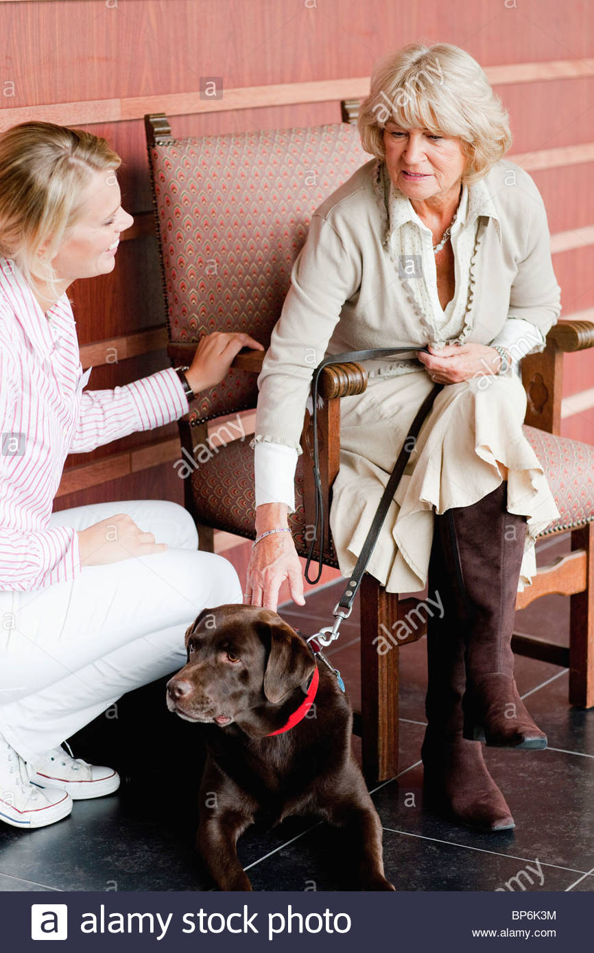A female care assistant talking to a senior woman with a dog - Stock Image