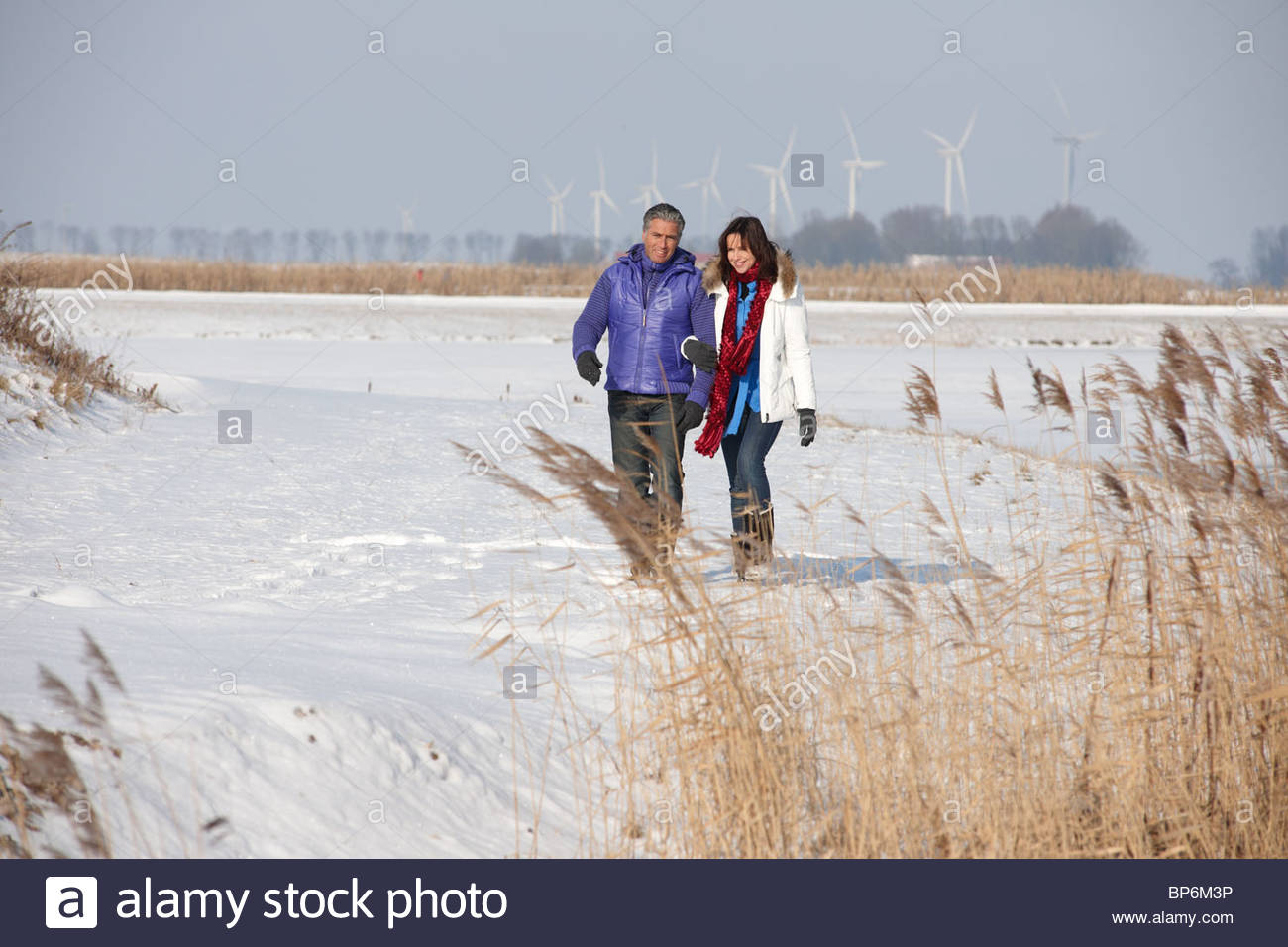 Mature couple walking through snow in Flevoland, The Netherlands - Stock Image