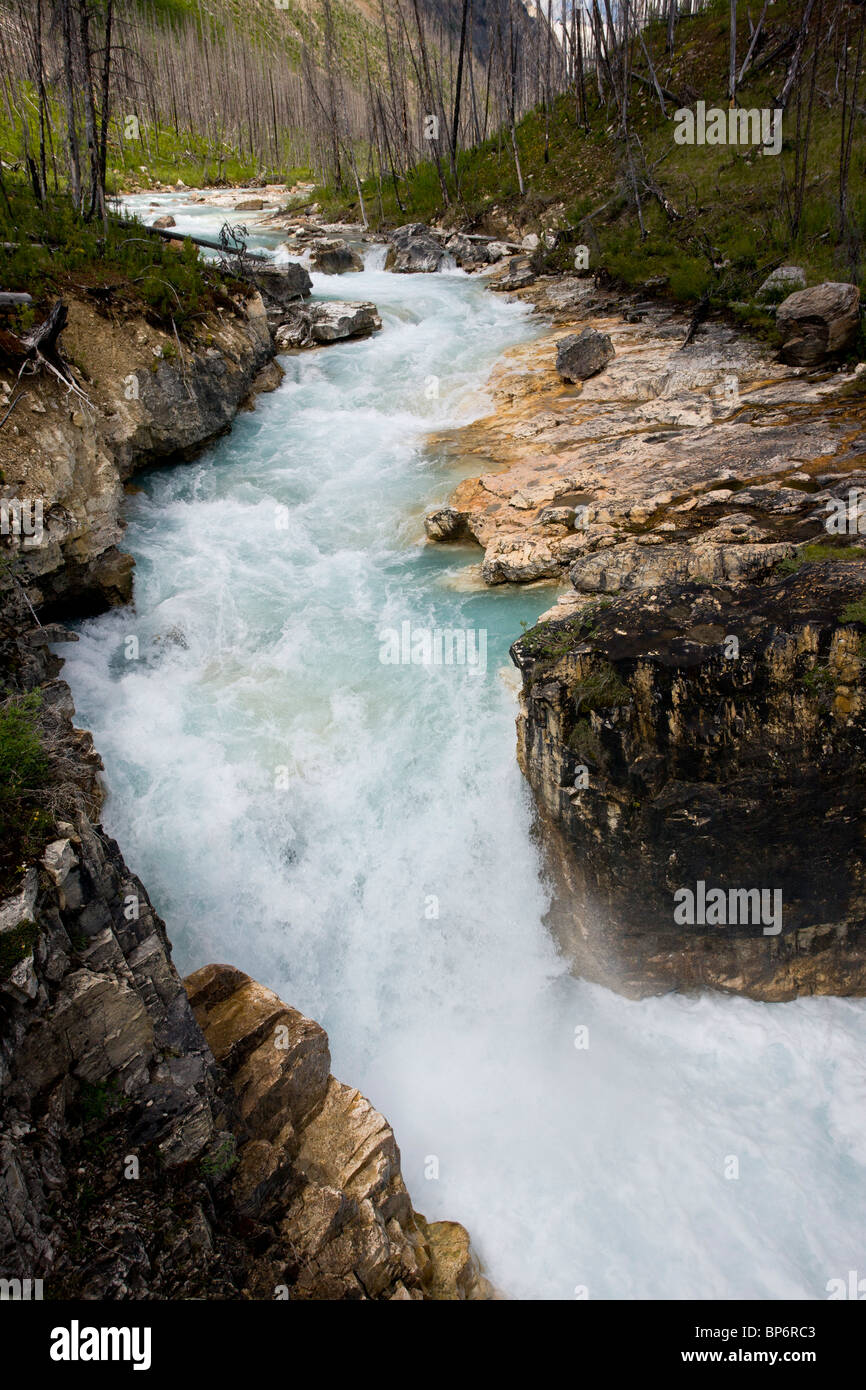 Marble Canyon, glacial meltwater channel, in Kootenay National Park, Rockies, Canada - Stock Image