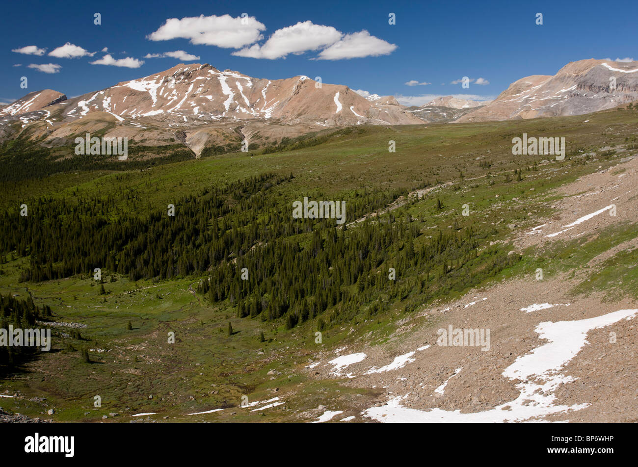 View down Mosquito Creek, below Molar Pass, Banff National Park, the Rockies, Canada - Stock Image