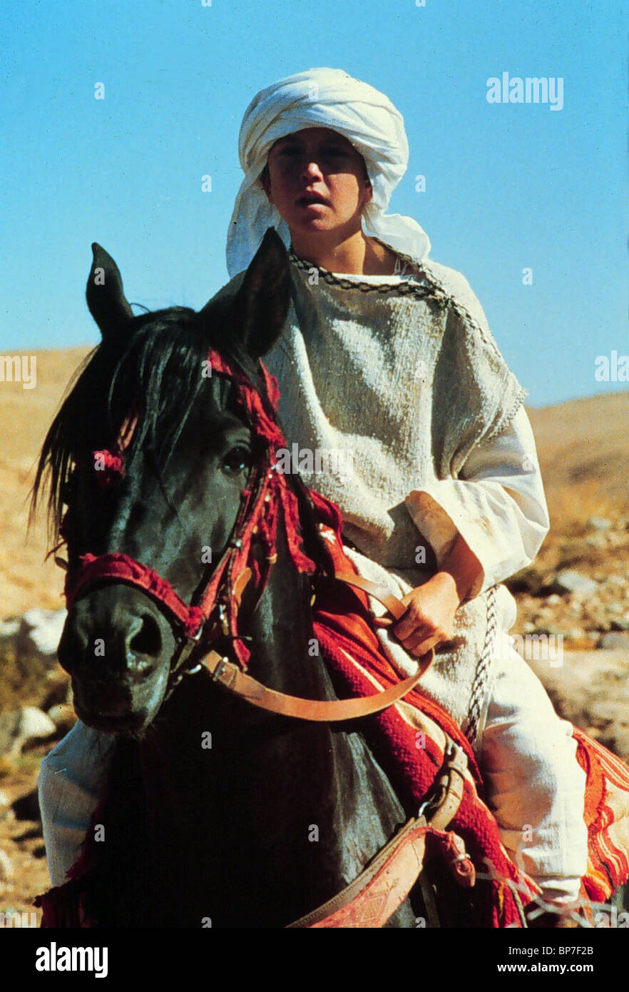 KELLY RENO & BLACK HORSE THE BLACK STALLION (1979) - Stock Image