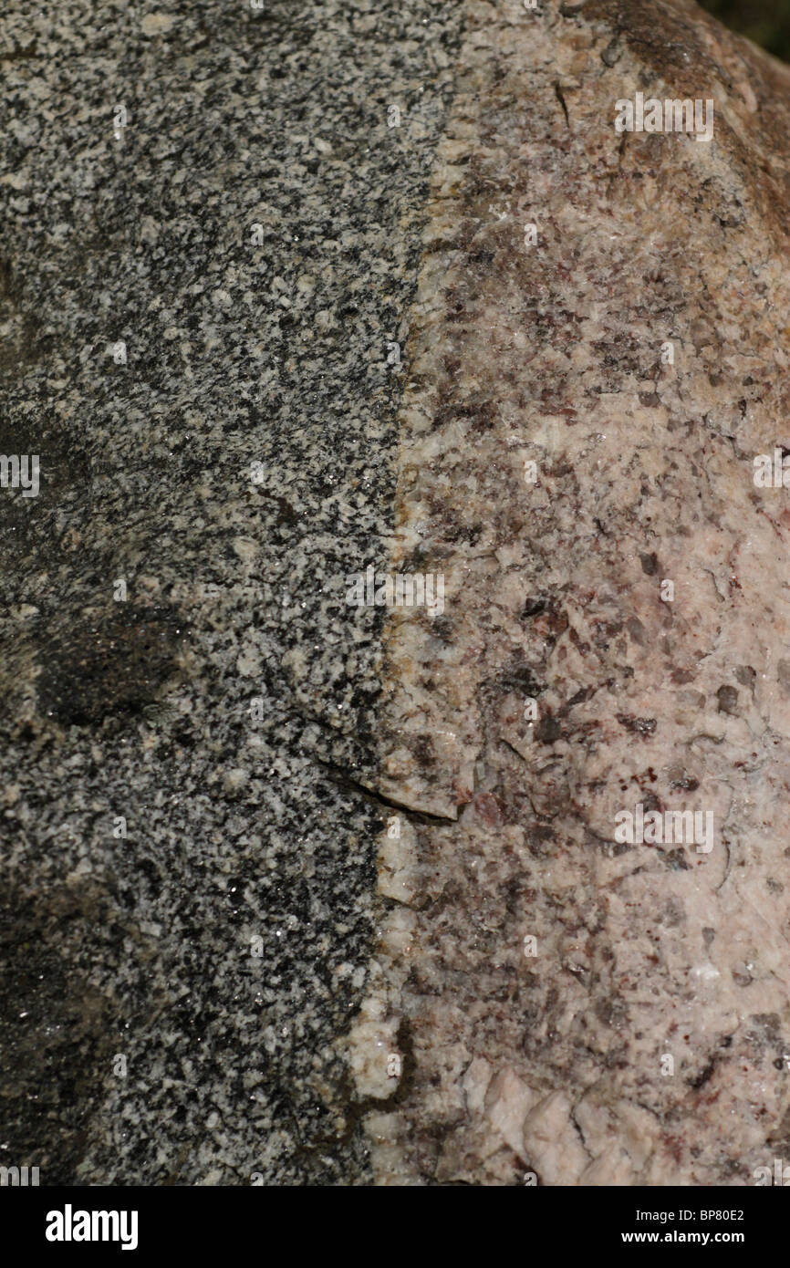 Intrusion contact zone between two types of granite. Glacial boulder Illinois - Stock Image
