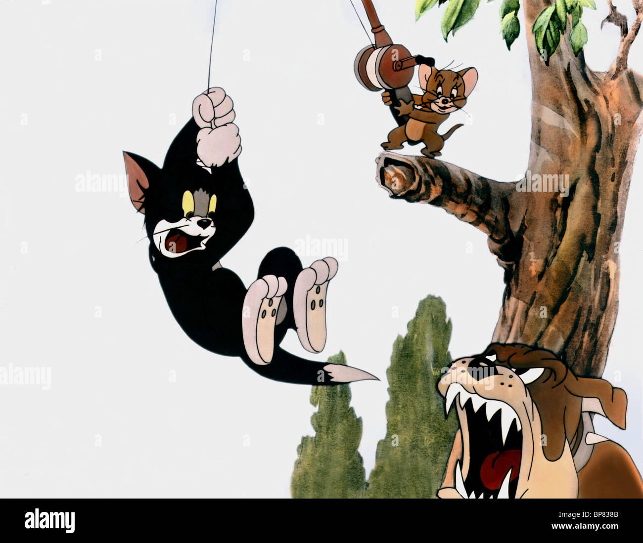 Tom And Jerry Stock Photos Tom And Jerry Stock Images Alamy