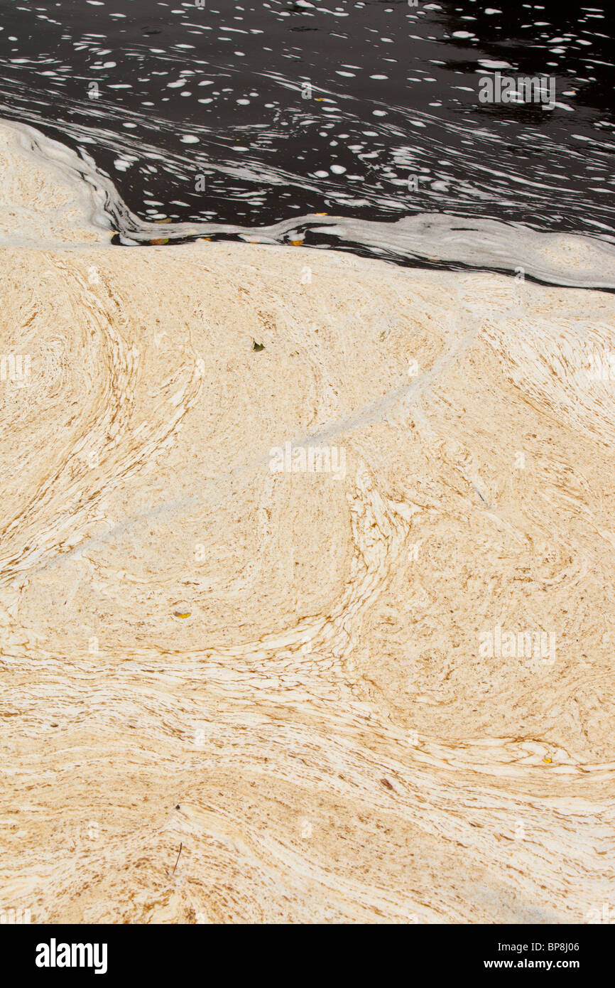 Patterns in scum floating on the River Ribble near Clitheroe, Lancashire, UK. - Stock Image