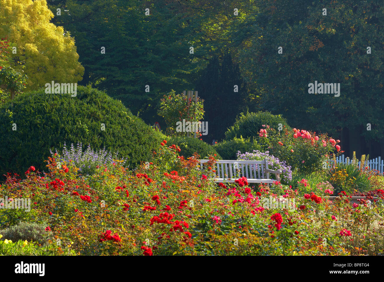 Westfalenpark, Dortmund, Ruhrgebiet, North Rhine-Westphalia, Germany, Europe Stock Photo