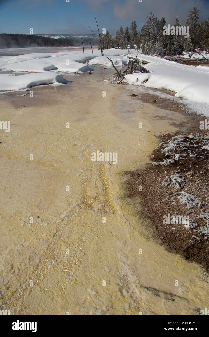 USA, Wyoming. Yellowstone National Park. Fountain Paint Pot area. Geothermal features, thermopile bacteria mat. Stock Photo