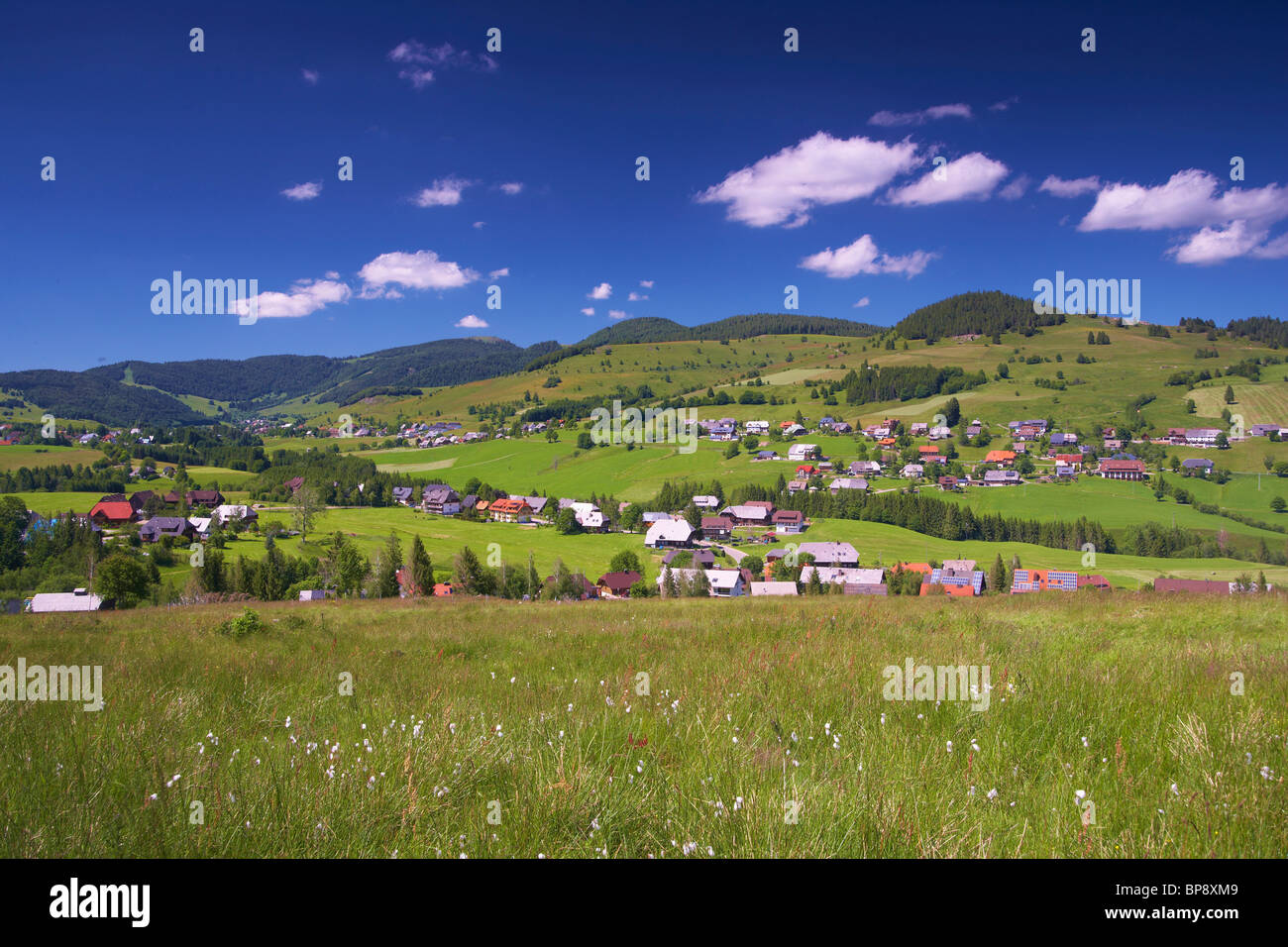 View at Bernau on a summer's day, Black Forest, Baden-Wuerttemberg, Germany, Europe - Stock Image