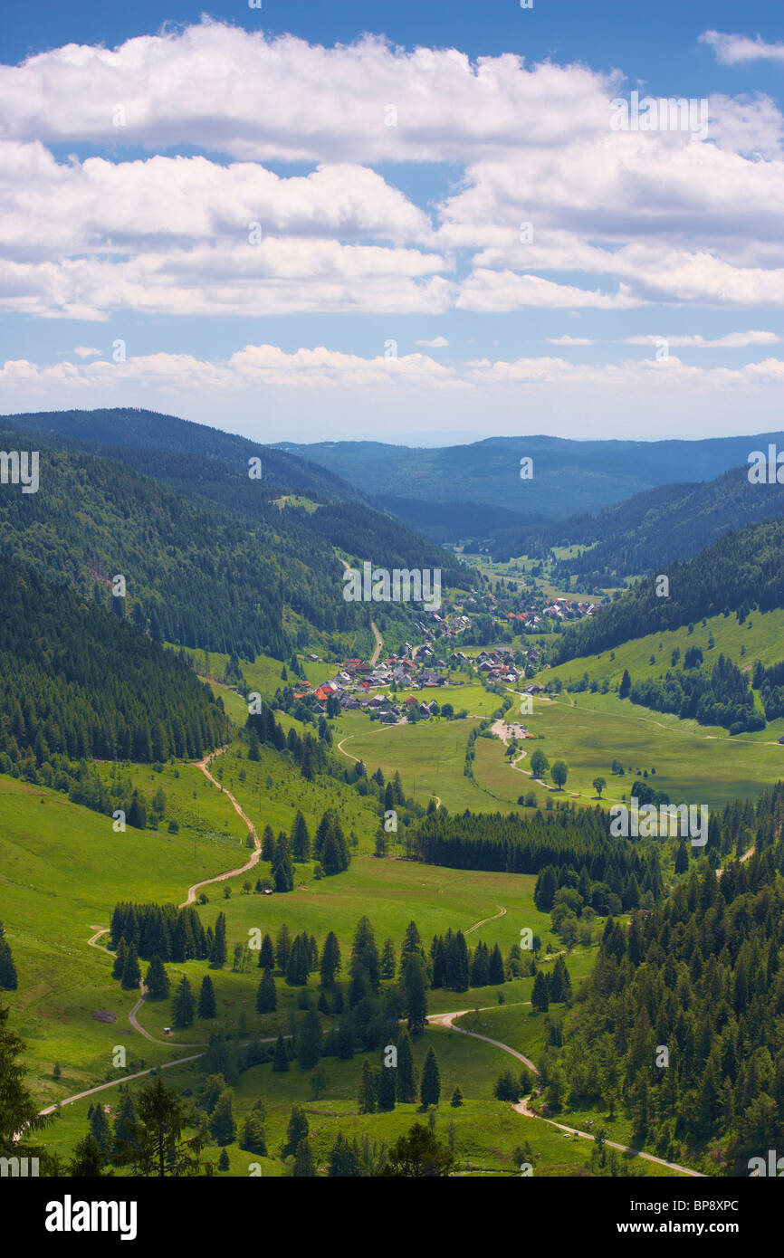View at Menzenschwand in valley of the river Alb, Summer day, Black Forest, Baden-Wuerttemberg, Germany, Europe - Stock Image