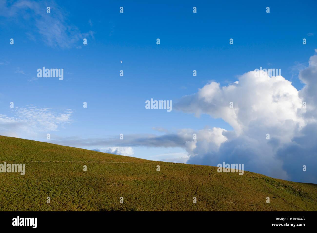 Moon over hill full of heather, near Rabacal, Paul da Serra Plateau, Madeira, Portugal - Stock Image