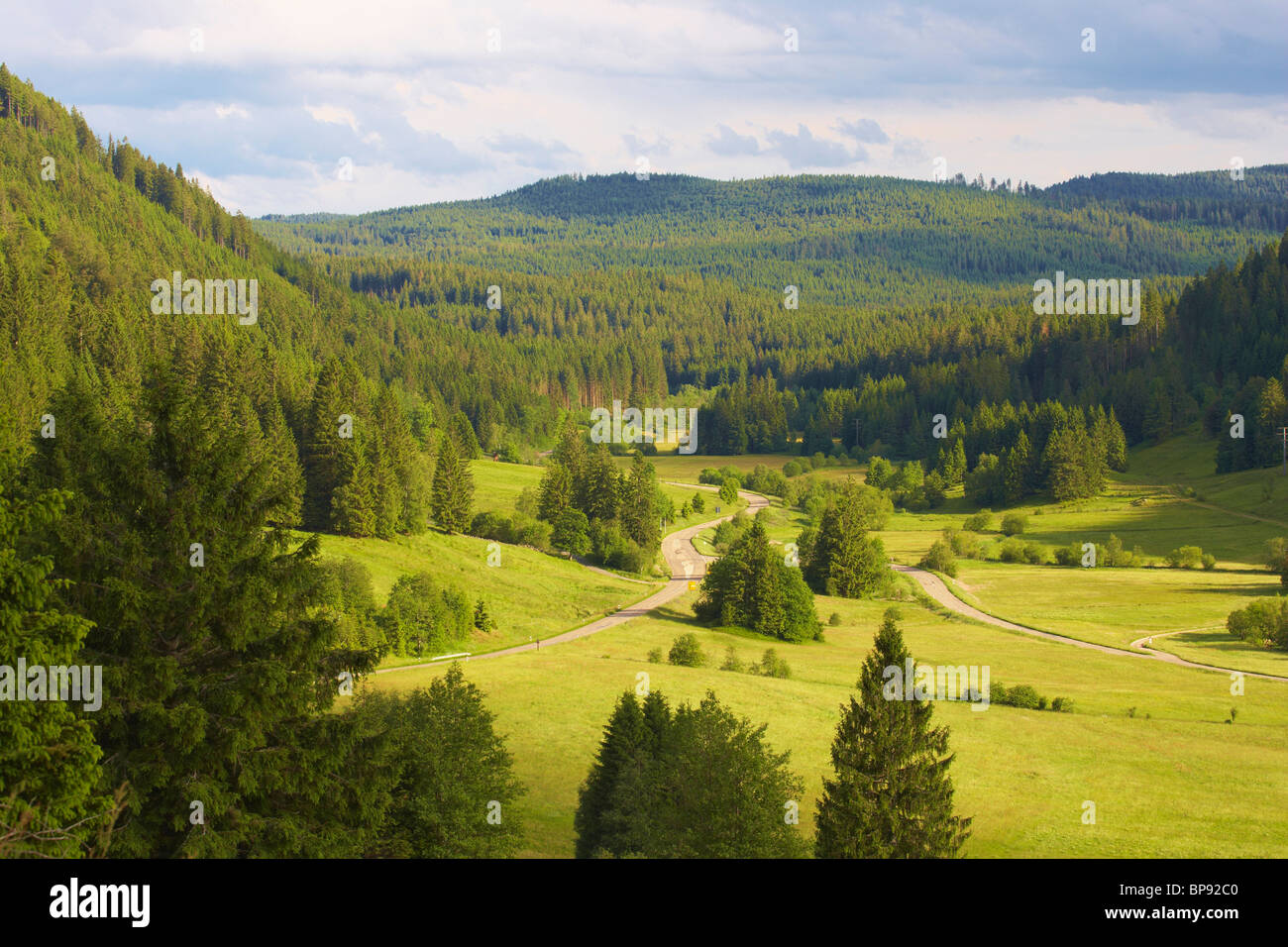 Valley of the river Alb near Menzenschwand, Summer day, Black Forest, Baden-Wuerttemberg, Germany, Europe - Stock Image