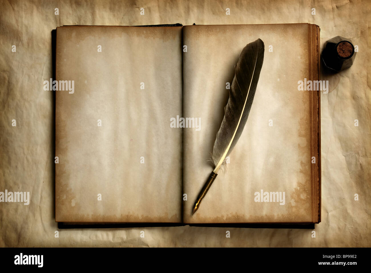 Quill on old blank book - Stock Image