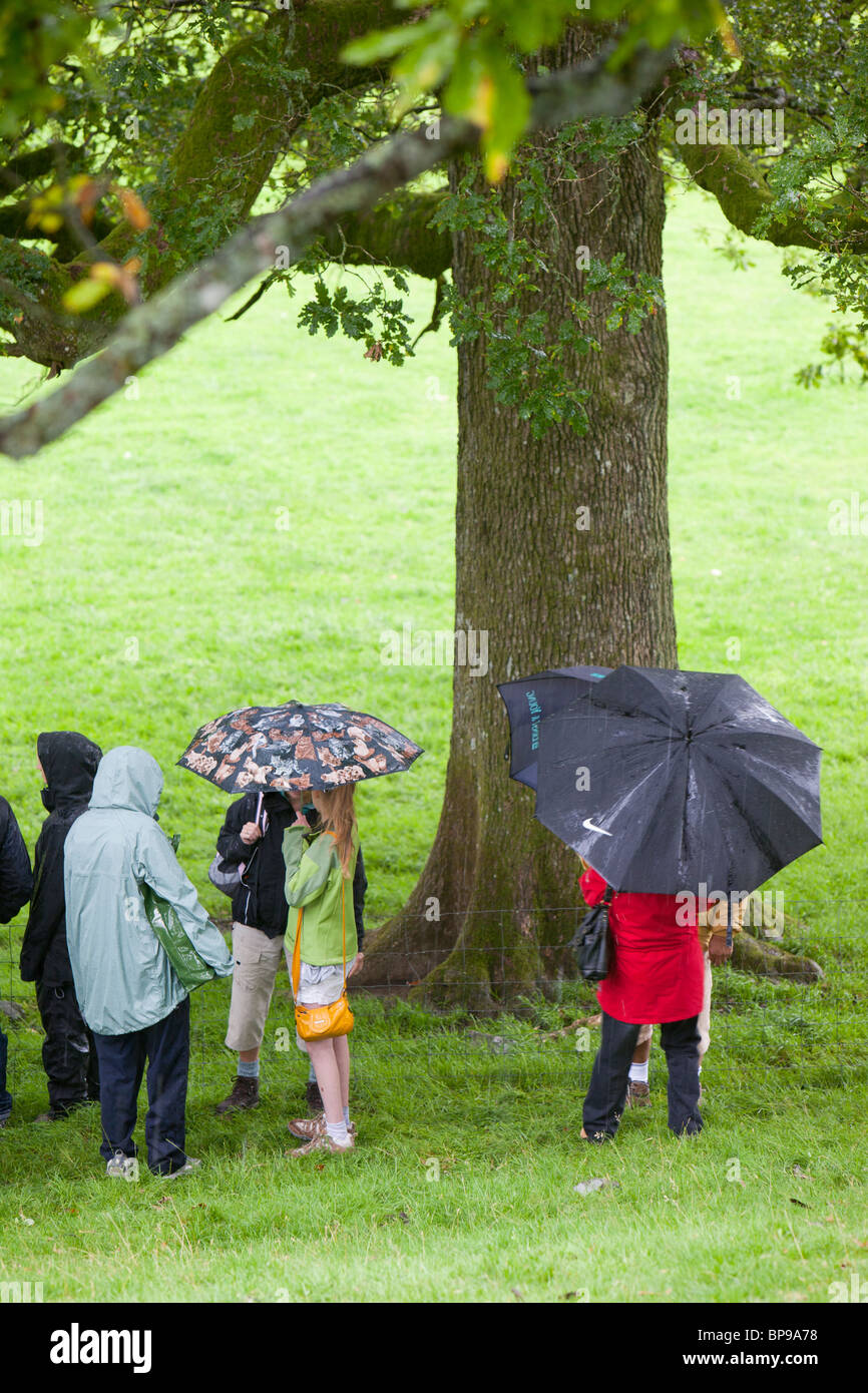It wouldn't be a British summer without a show being rained on.Spectators take shelter at the Vale of Rydal - Stock Image