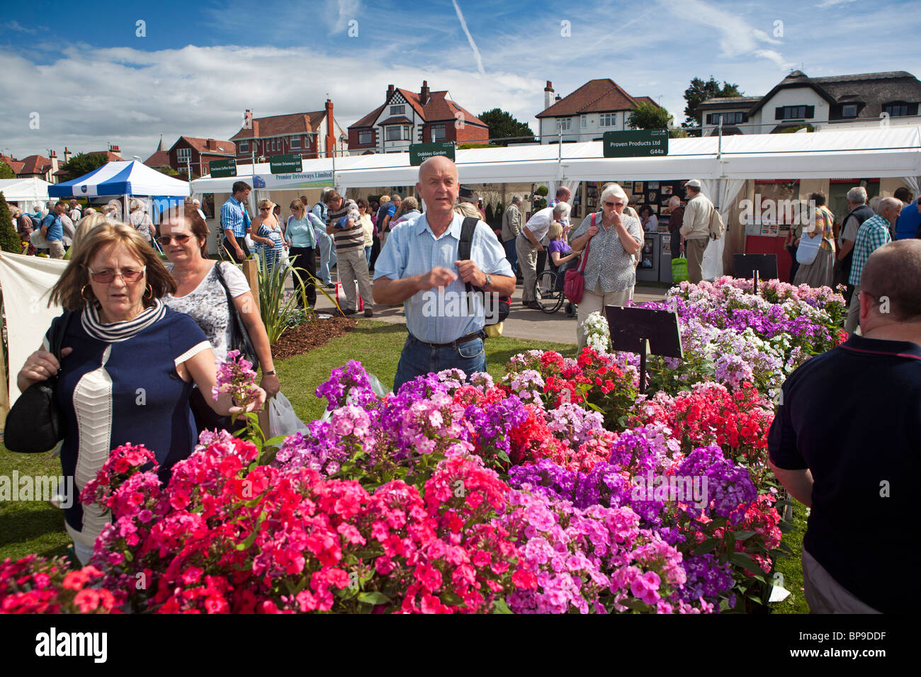 UK, England, Merseyside, Southport Flower Show, visitors at nursery stall selling colourful stocks in flower Stock Photo