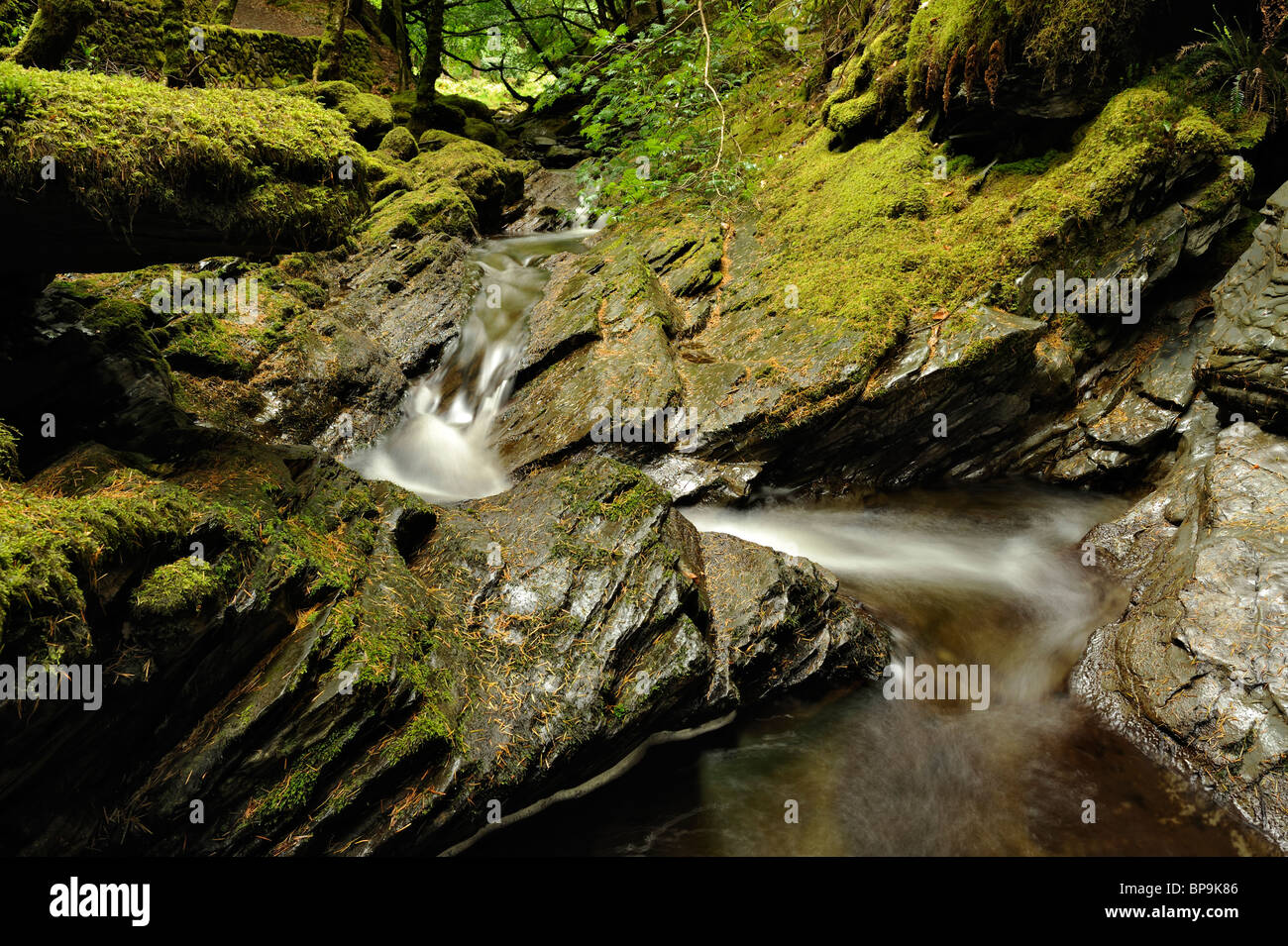 The river Peiran running through Hafod woods in Ceredigion, Wales. - Stock Image