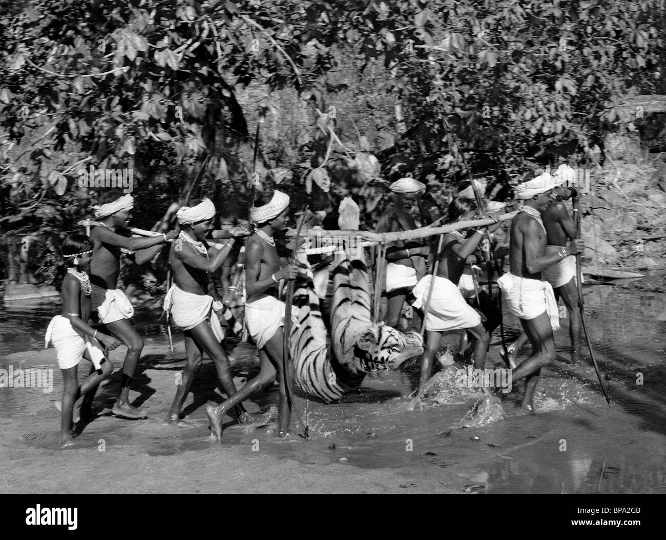 INDIANS WITH CAPTURED TIGER THE FLUTE AND THE ARROW (1957) - Stock Image