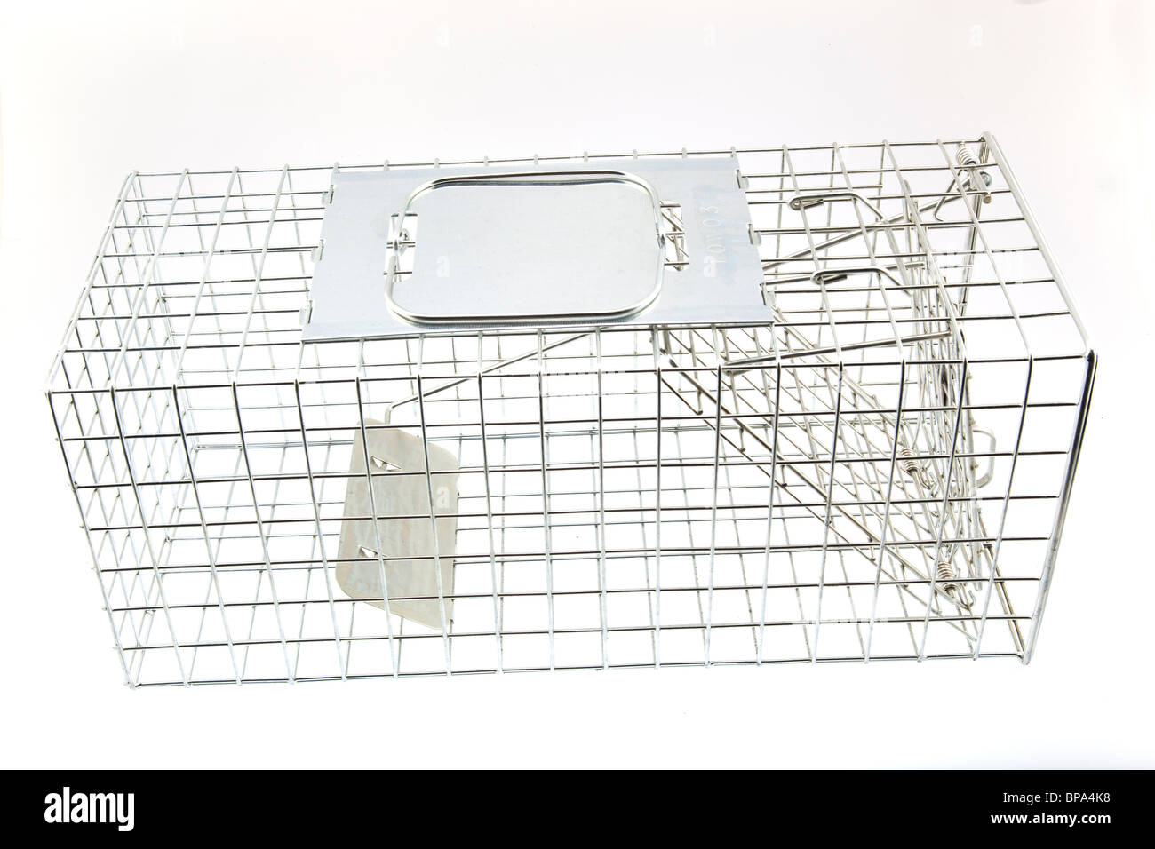 Humane trap for squirrels - Stock Image