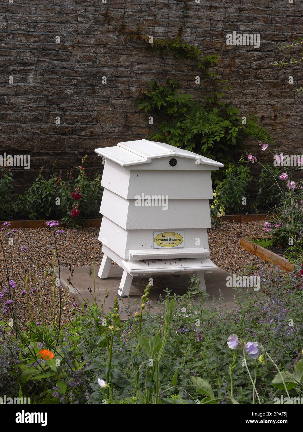 A traditional WBC 'William Broughton Carr' beehive at Eggleston Manor Co. Durham - Stock Image