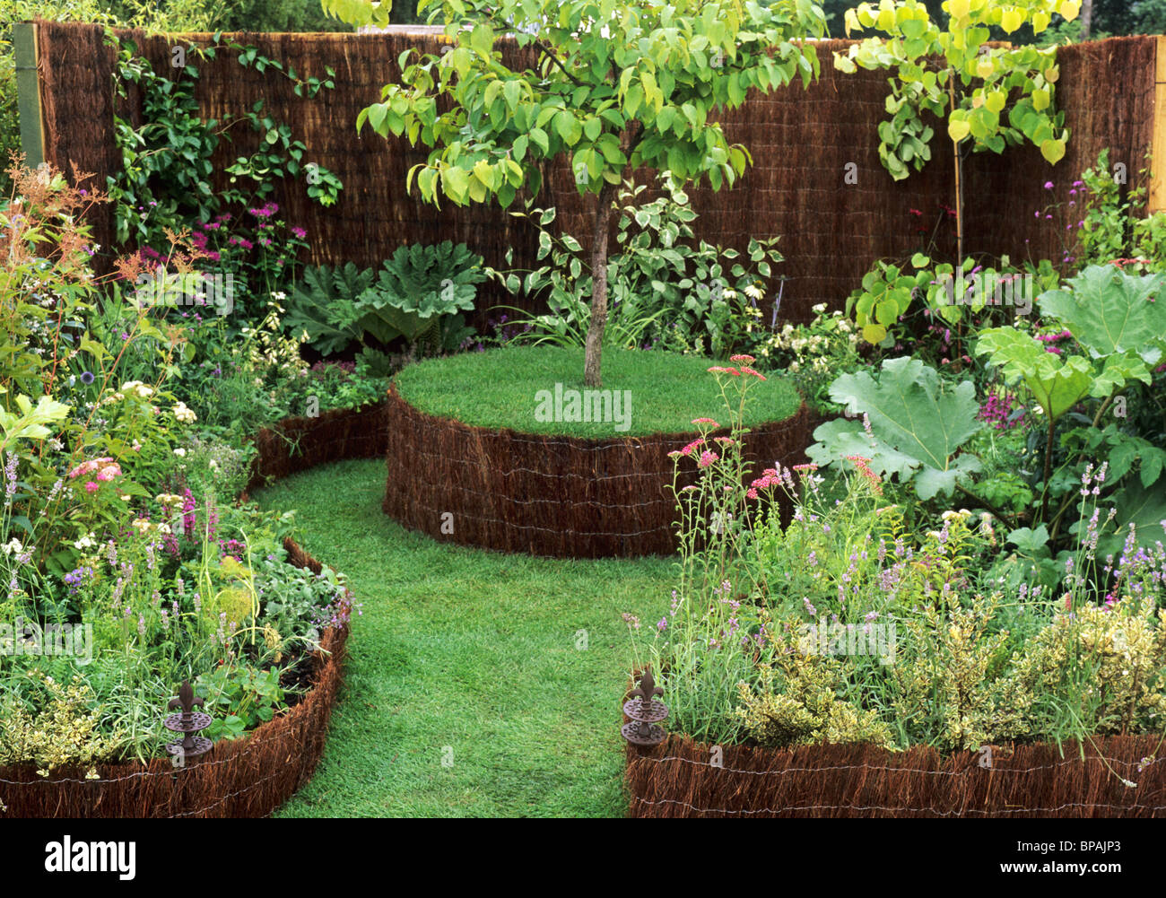 Medicinal Plants Planting Small Gardens Plant Stock Photos