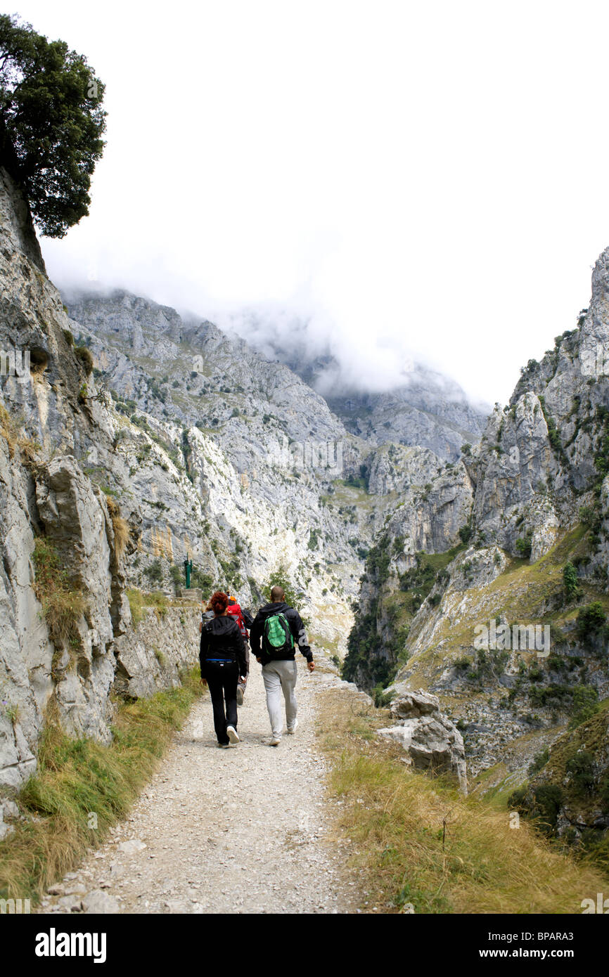 Walkers head up into the clouds on a dull day, the Cares Route, along the Cares Gorge, Picos de Europa, Spain, Desfiladero - Stock Image
