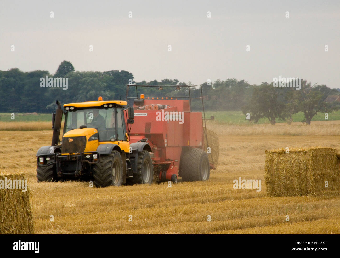 jcb 4x4 tractor with massey ferguson 190 baler attached working in a rh alamy com Vintage Massey Ferguson Baler Massey Ferguson 1745 Baler
