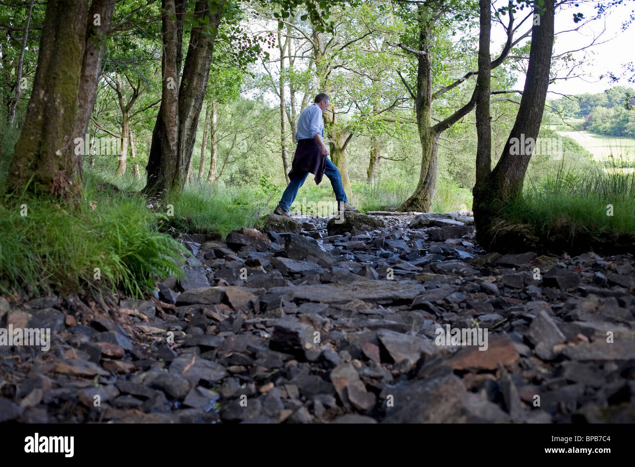A dry river bed in the Lake district near to Lake Windemere, Cumbria Stock Photo