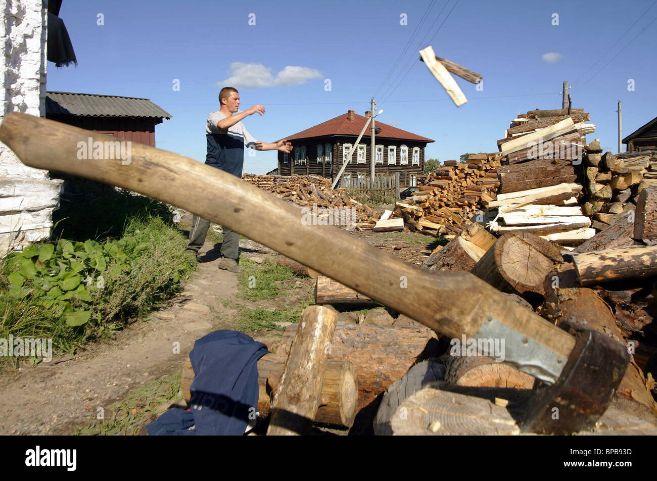 Residents of the village of Zhazhlevo store wood for winter - Stock Image