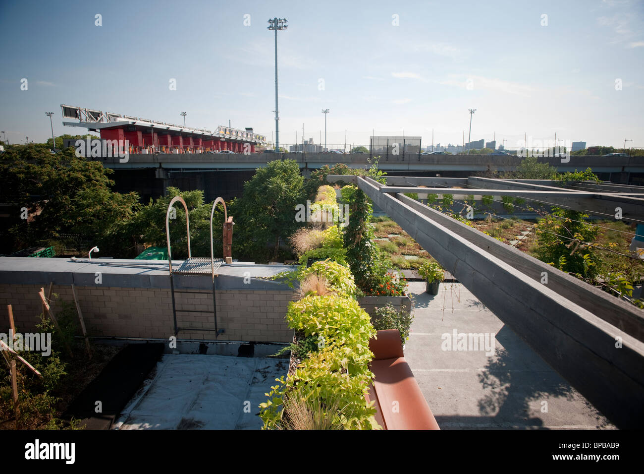 5 Boro Green Roof Garden on the roof of the NYC Parks and Recreation Dept. administration building on Randall's - Stock Image