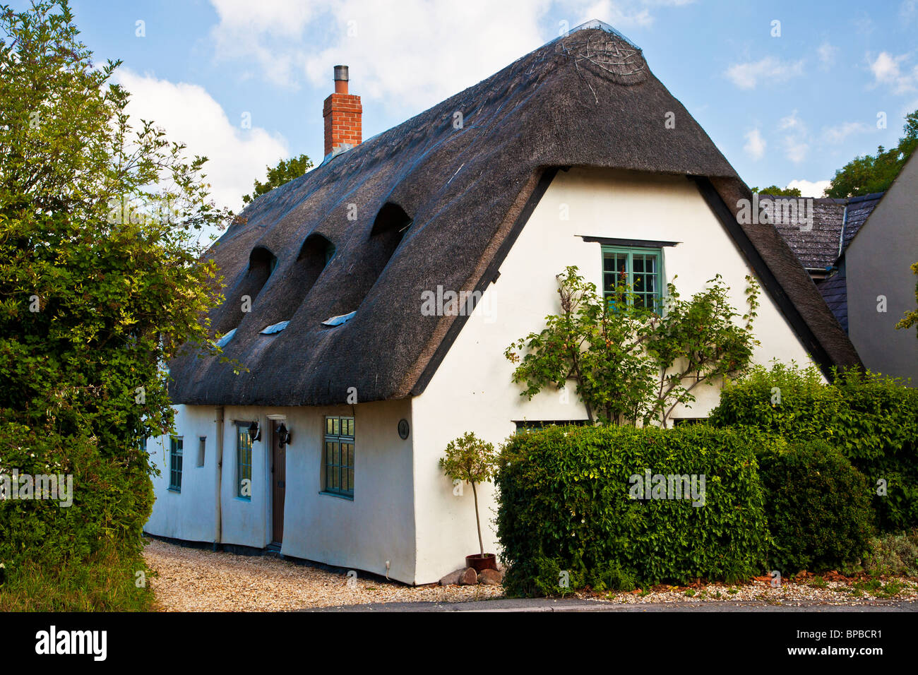 Thatched cottage in the Wiltshire village of Upper Wanborough - Stock Image
