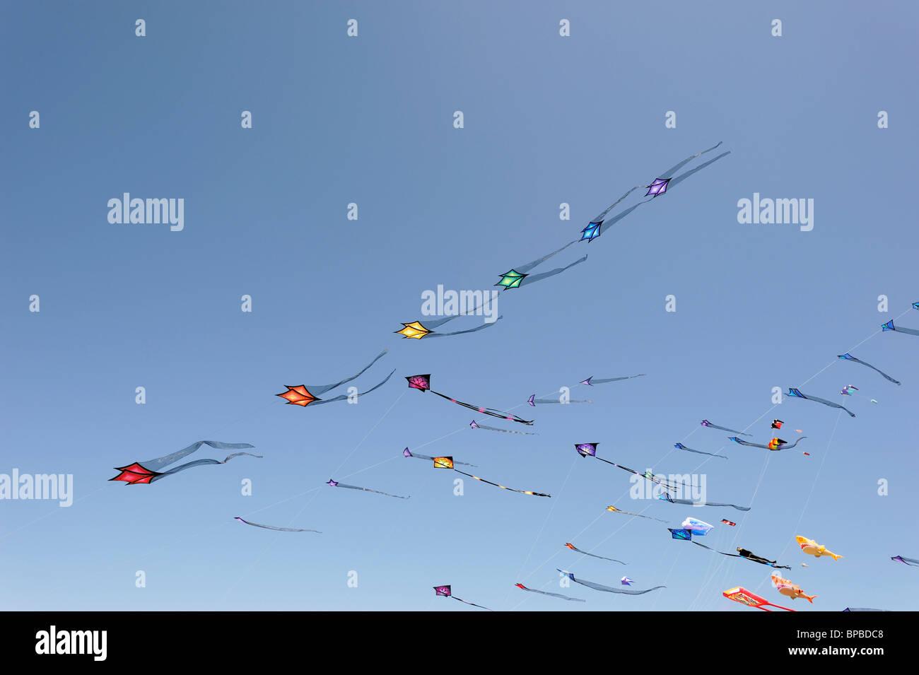 Sky full of kites - Stock Image