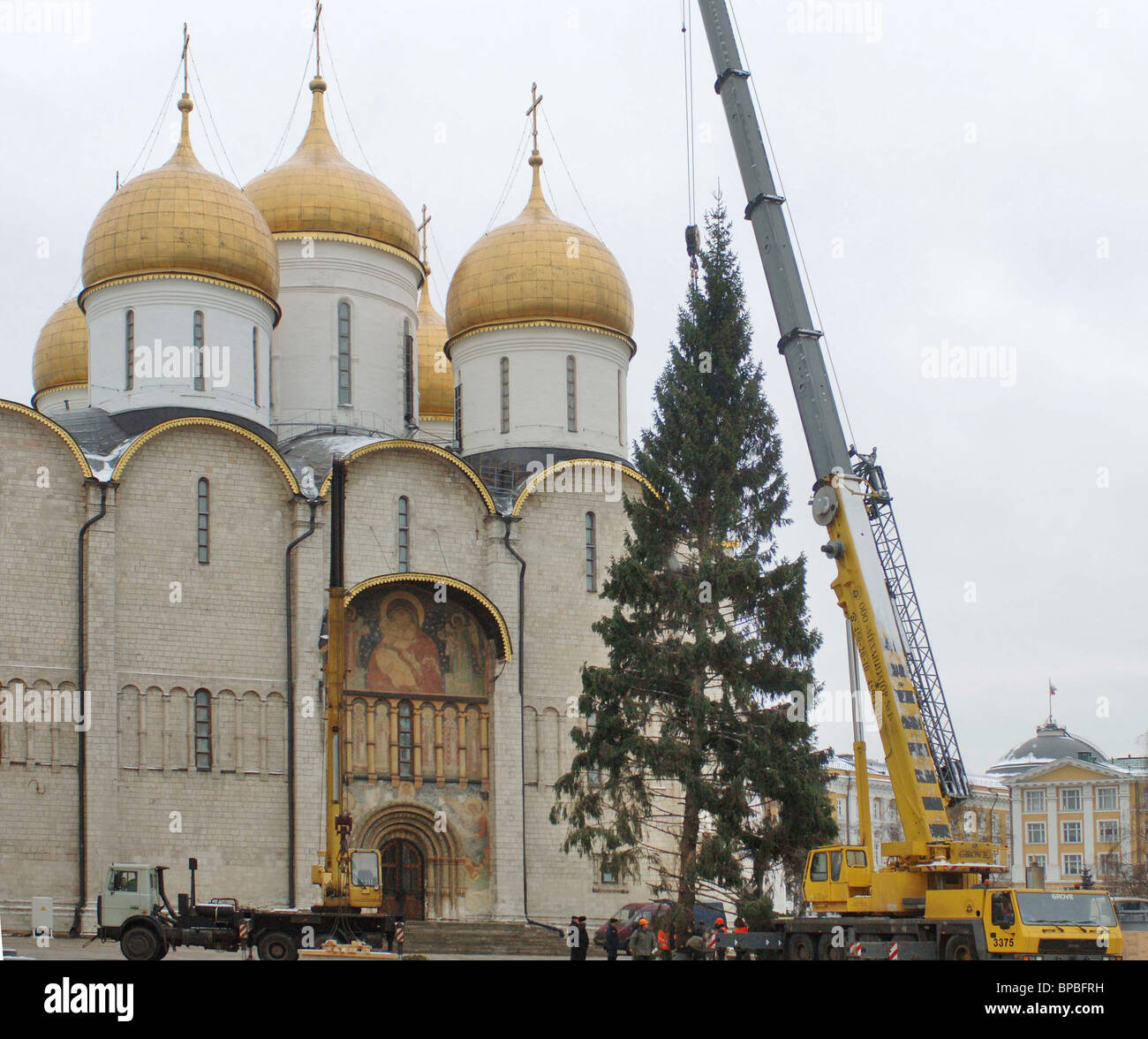 Chief Christmas Tree of Russia arrives in Moscow from Veliki Ustyug - Stock Image