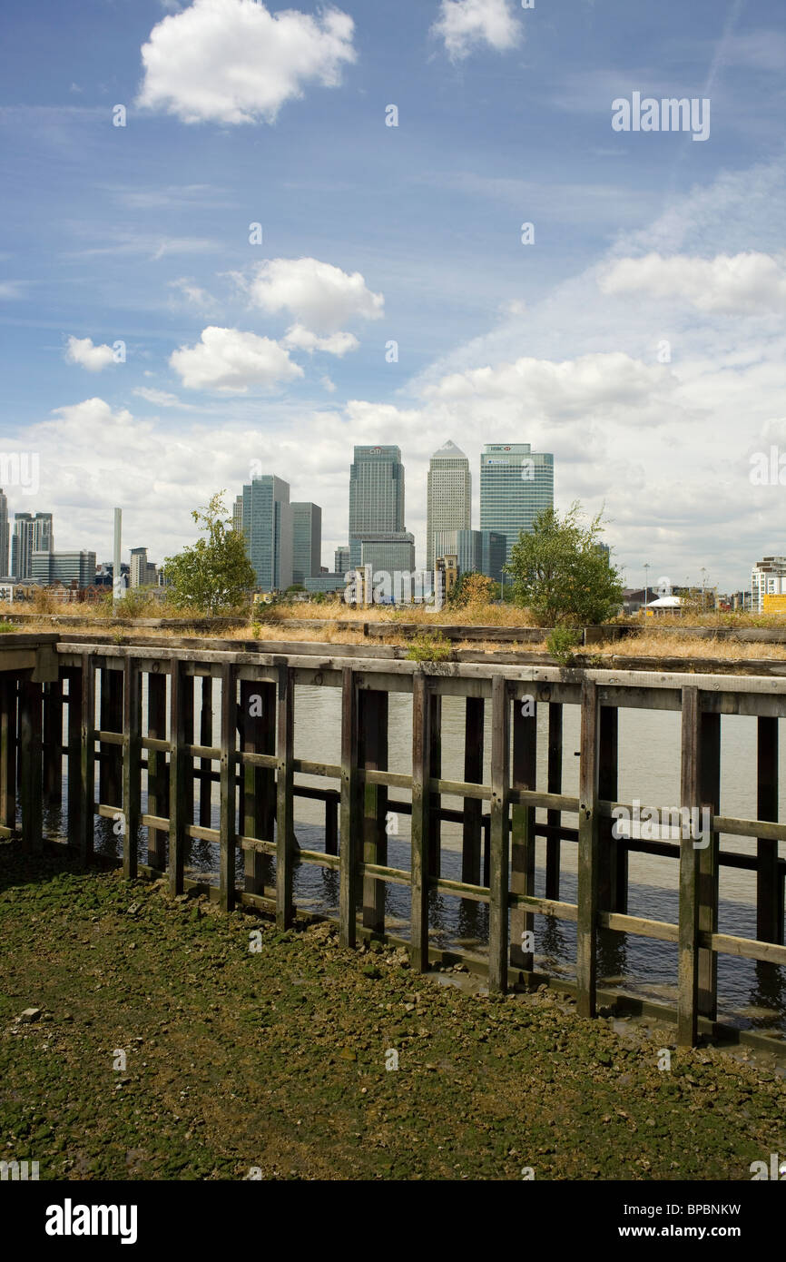 photograph of conservation area on a jetty on the river Thames, London with Canary Wharf in the background. - Stock Image