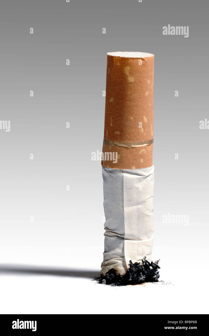Stubbed out cigarette - Stock Image