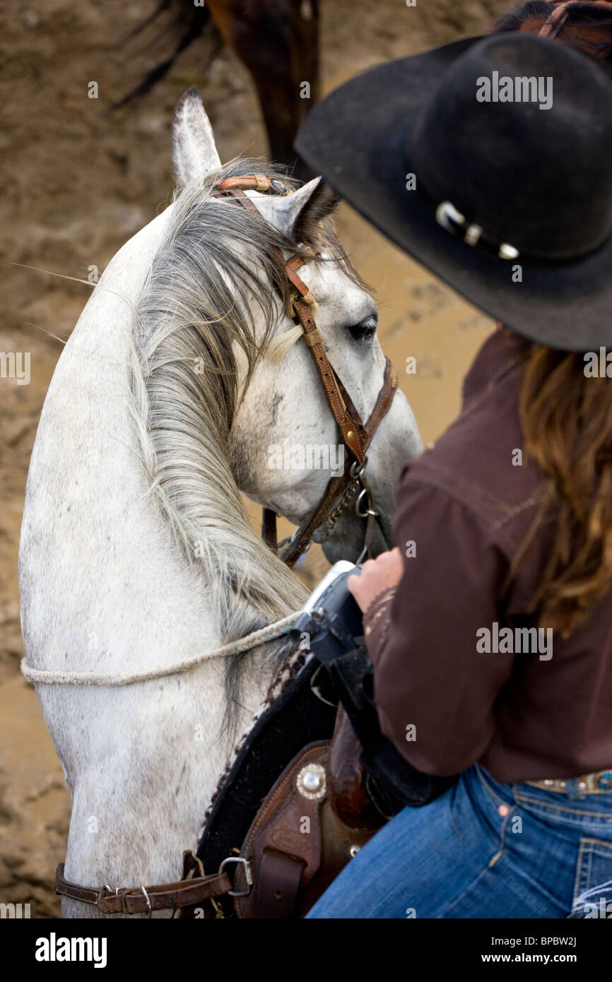 Cowgirl on horseback waiting for her event, Chaffee County Fair & Rodeo - Stock Image