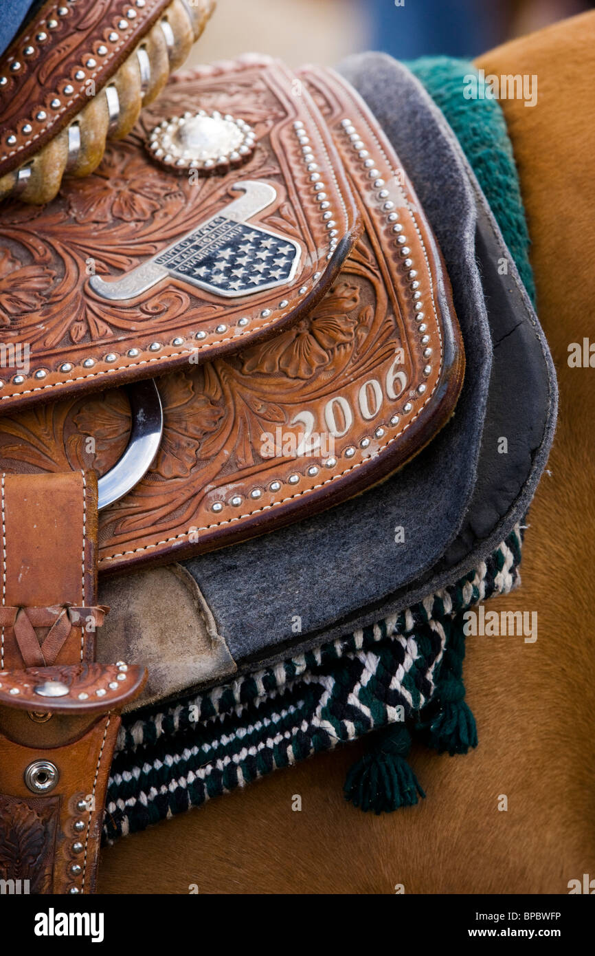 Close-up of tack on a horse, Chaffee County Fair & Rodeo - Stock Image