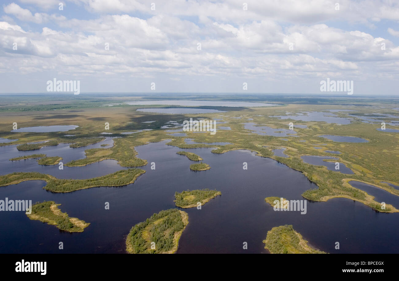 Aerial shots of West Siberia - Stock Image
